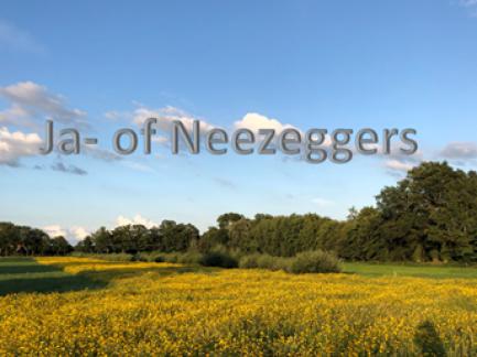 Ja- of Neezeggers
